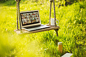 Friends video chatting on rustic bench in sunny garden