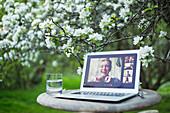 Friends video chatting on laptop below tree in garden
