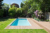 Sunny swimming pool and summer garden