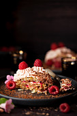 Chocolate and raspberry Dacquoise cake