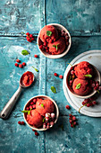 Strawberry and red currant sorbet with fresh mint