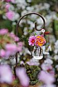 Ministrauß mit Blüten von Primeln und Blutpflaume