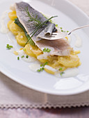 Poached trout with a warm potato salad