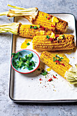 Grilled corn cobs with spice butter, coriander and chilli