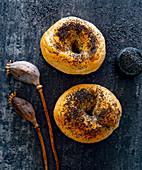 Poppy seed bagels