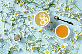 Chamomile tea served with fresh flowers on blue background