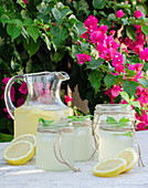 Glass jar with fresh cold lemonade placed on marble table with slices of lemon in summer garden with blooming plants in background