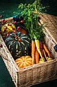 Pumpinks and colourful carrots