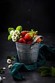 Fresh strawberries and strawberry flowers
