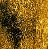 Fortuna region, Venus, radar image