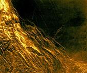 Danu Montes and Lakshmi Planum, Venus, radar image
