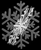 Snowflake decoration, X-ray