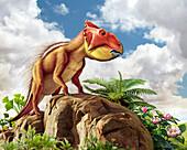Leptoceratops dinosuar, illustration