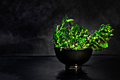 Heap of fresh green assorted herbs for culinary arranged in black bowl against black background