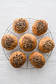 Appetizing similar round buns with brown surface and soft structure covered with crispy sesame seeds