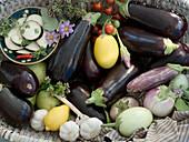 Verschiedene Auberginensorten, Zitrone, Knoblauch und Kräuter