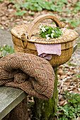Posy of wood anemones on top of picnic basket