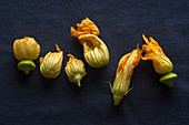 Fresh raw zucchini flowers on dark blue linen tablecloth