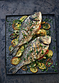 Turkish sea bream on a bed of potatoes