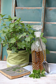 Mint syrup in a crystal carafe