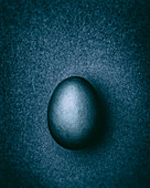 Blue-gray Easter egg on a gray-blue background