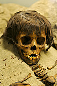 Ancient Peruvian sacrifice