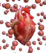 Heart damage in long Covid, conceptual illustration