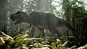 Tyrannosaurus rex herd hunting, illustration
