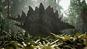 Stegosaurus dinosaur, illustration