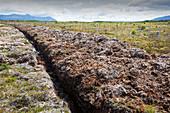 Drained peat bog, Patagonia, Chile