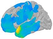 Electrical brain waves for memory retrieval, illustration