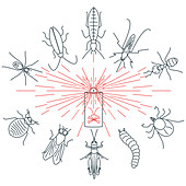 Common pests, conceptual illustration