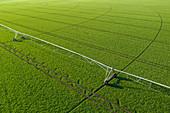 Centre-pivot irrigation sprinkler in field