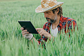 Agronomist using tablet computer in wheat crop field