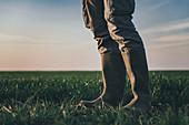 Farmer wearing rubber boots standing in wheatgrass field