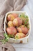 Uncooked potatoes in basket