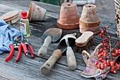 Scheren, Kleingeräte und Töpfe reinigen und pflegen, Handschuhe und Zweig  mit Zieräpfeln