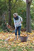 Frau beim zusammenrechen von Ahornlaub, Korb mit Blättern