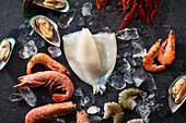 Seafood-Stilleben: Flusskrebse, Shrimps, Grünlippmuschel und Tintenfisch