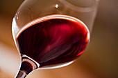 A glass of red wine, Martin Wassmer vineyard, Markgräflerland region, Baden, Germany