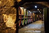 Barrel cellar, Erbgraf Neipperg vineyard, Württemberg, Germany