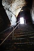 Cellar steps, Graf Adelmann vineyard, Württemberg, Germany