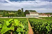Gebäude, Domaine Clos des Lambrays, Burgund, Frankreich