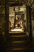 Natural cellar, Domaine Clos Lambrays, Burgundy, France