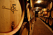 Barrique cellar, Meo-Camuzet, Burgundy, France