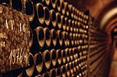 Bottle cellar, Champagne Bollinger, France