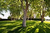 The park at Chateau Latour, Pauillac, Bordeaux, France