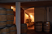 Barrique cellar, Clos Triguedina, Cahors, Vire sur Lot, France