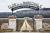 Castle and vineyard landscape, Domaine Mugnier, Burgundy, France