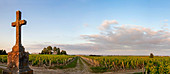 An panoramic view from Chateau Pichon Comtesse de Lalande, Pauillac, Bordeaux, France